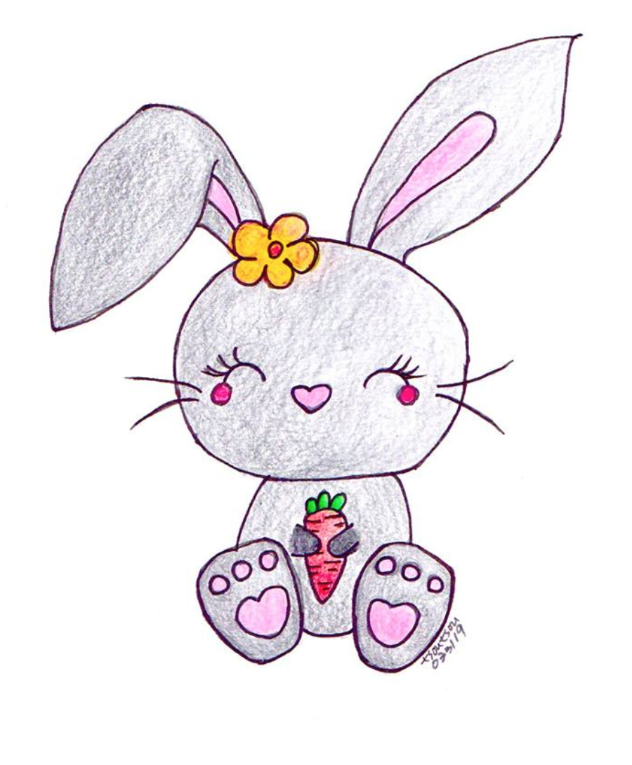 Lovely Bunny Drawing with Carrot