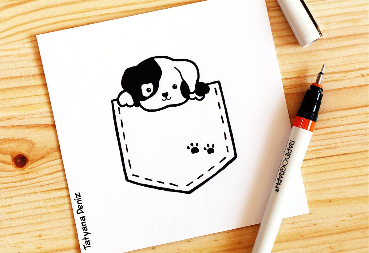 Peekaboo pocket puppy